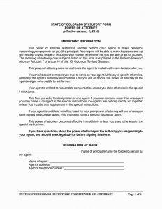 Fillable Colorado Power of Attorney Form